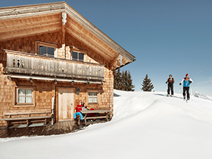 Lovely alpine chalet, enjoy the alpine lifestyle