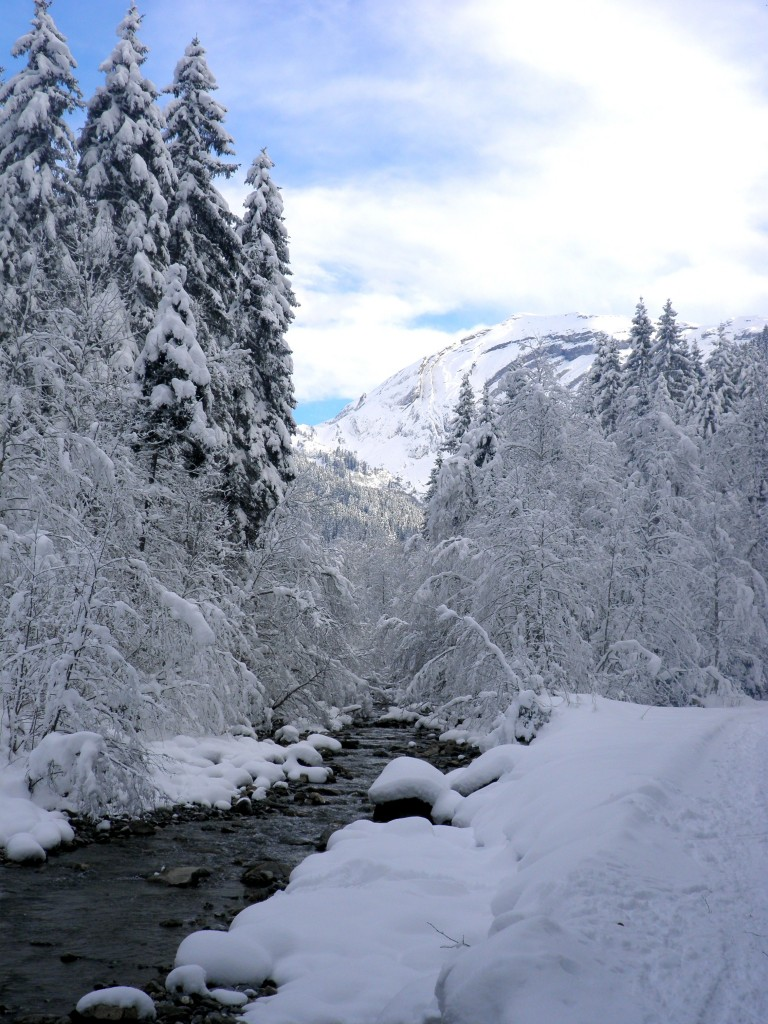 The Dranse river runs the length of the Vallée de la Manche to Morzine